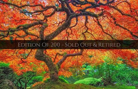 Limited Edition Master Photography Fine Art Prints