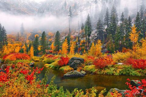 Fine Art, Leavenworth, Wenatchee, River, Tumwater, Canyon, Limited Edition, Snow, Autumn,