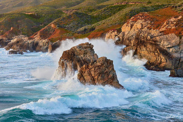 California Love | Oceans & Rivers Photography | Aaron Reed