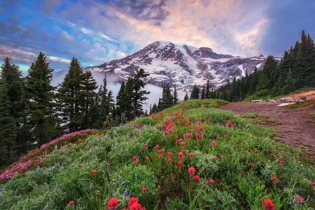 Paradise, Longmire, Mt rainier, National Park, Tatoosh, Mountain, Fine Art, Limited Edition,