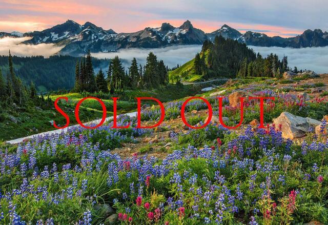 Mt Rainier Just Like Paradise Photo Workshop 2019 SOLD OUT