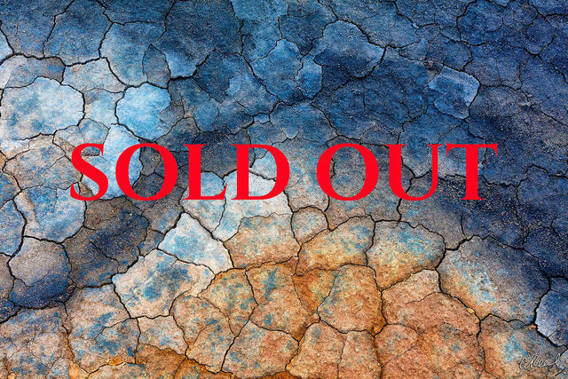 The Business Of Nature Photography 2019: 2 Day Workshop  SOLD OUT