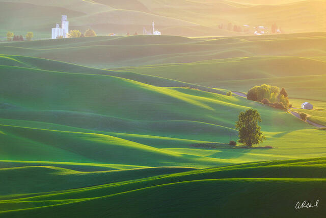 Palouse, Steptoe, Butte, Light, Wheat, Farm