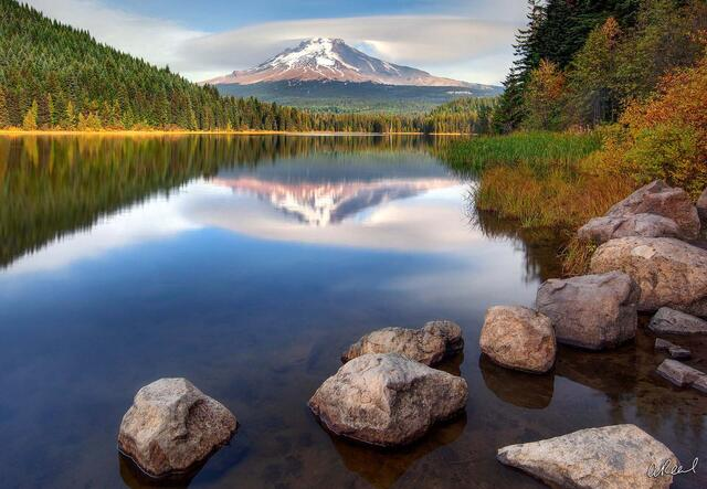 Fine Art, Limited Edition, Trillium, Lake, Mt Hood, Oregon, Mountain, Meadow,