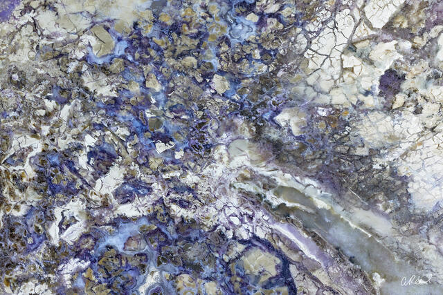 Tiffany Stone | Abstract Photography | Aaron Reed
