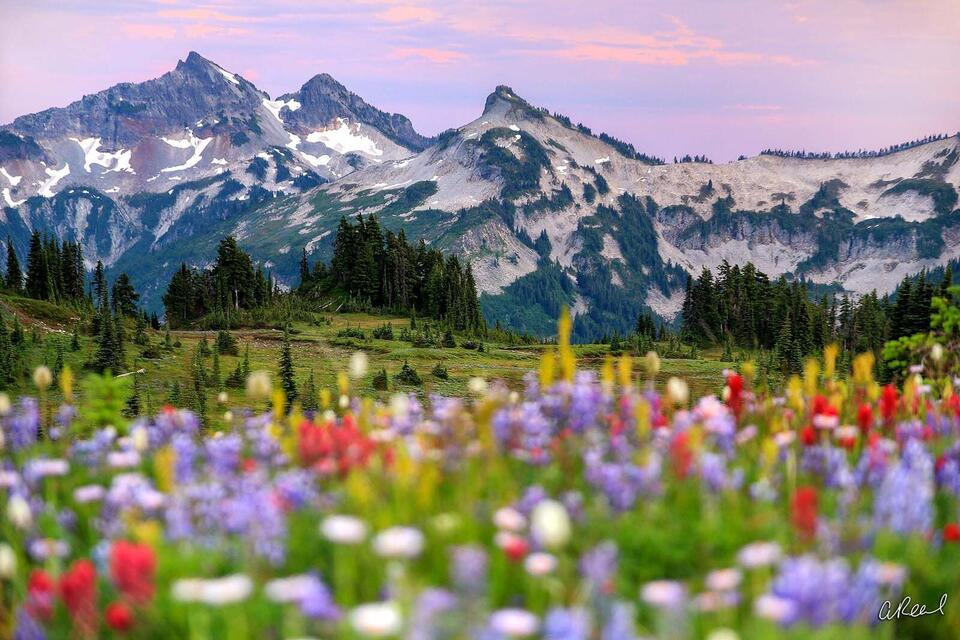 Fine Art, Limited Edition, Mount Rainier, National Park