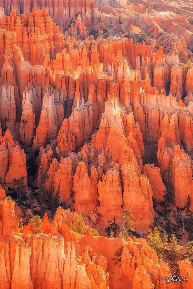 Fine Art, Limited Edition, Landscape, Bryce Canyon, Utah,