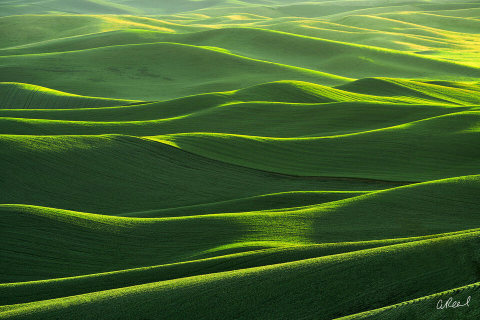Palouse, Steptoe Butte, Green, Abstract, Light, Lantern, Washington, Fields, Grain