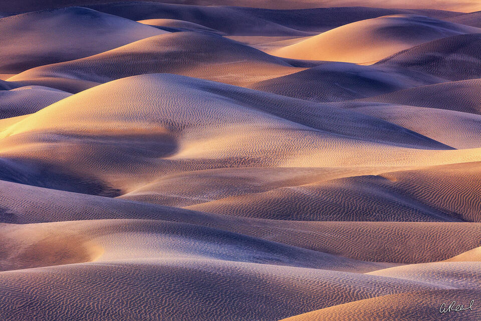 Fine Art, Limited Edition, Mesquite Dunes, Death Valley, National Park, Shadow Stories, Dunes, California,