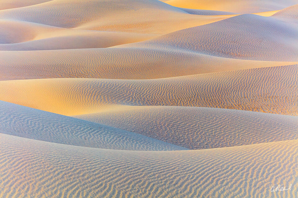 Death Valley, Mesquite, Dunes, Shifting, Sands, Sindwinder, National Park, Fine Art, Limited Edition,