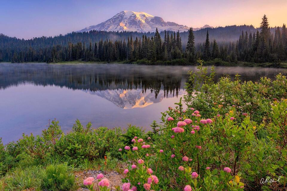 Reflection, Mountain, Twilight, Rainier, Sunrise, Fine Art, Limited Edition, Light, Morning,