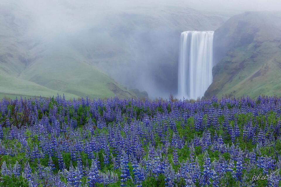 fine art, limited edition, iceland, skogafoss,
