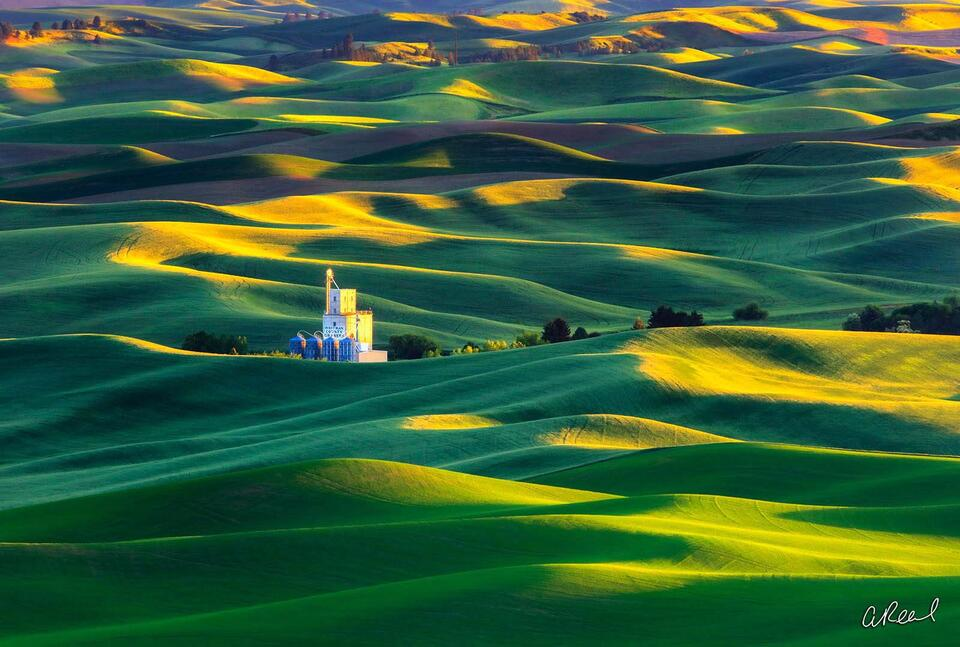 Steptoe Butte, Palouse, Washington, Fine Art,