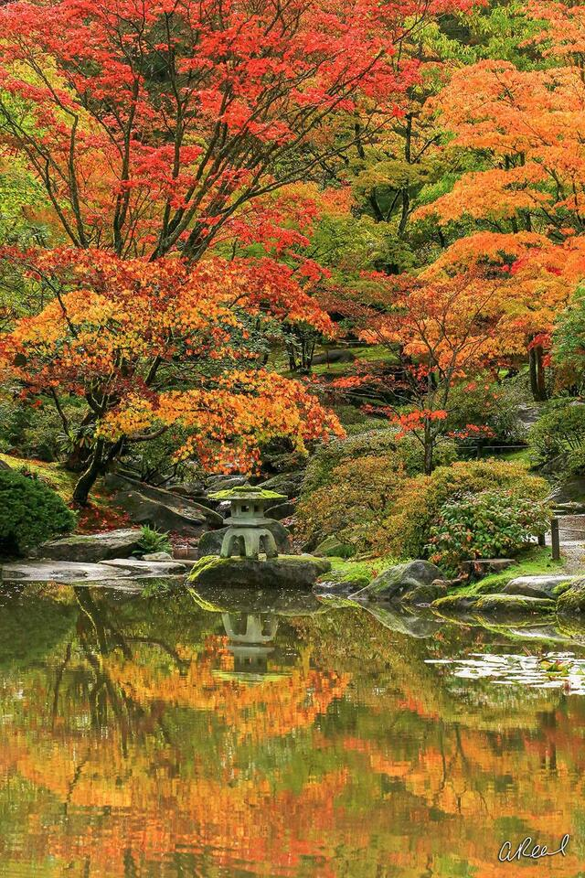 Fine Art, Limited Edition, Seattle, Japanese Garden,