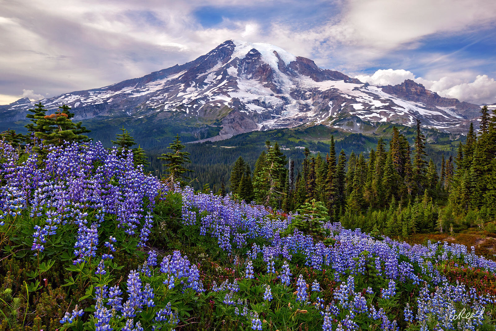 Create a window into nature with Aaron Reed's limited edition photography print, Beautiful Washington, from his Mountains & Meadows...