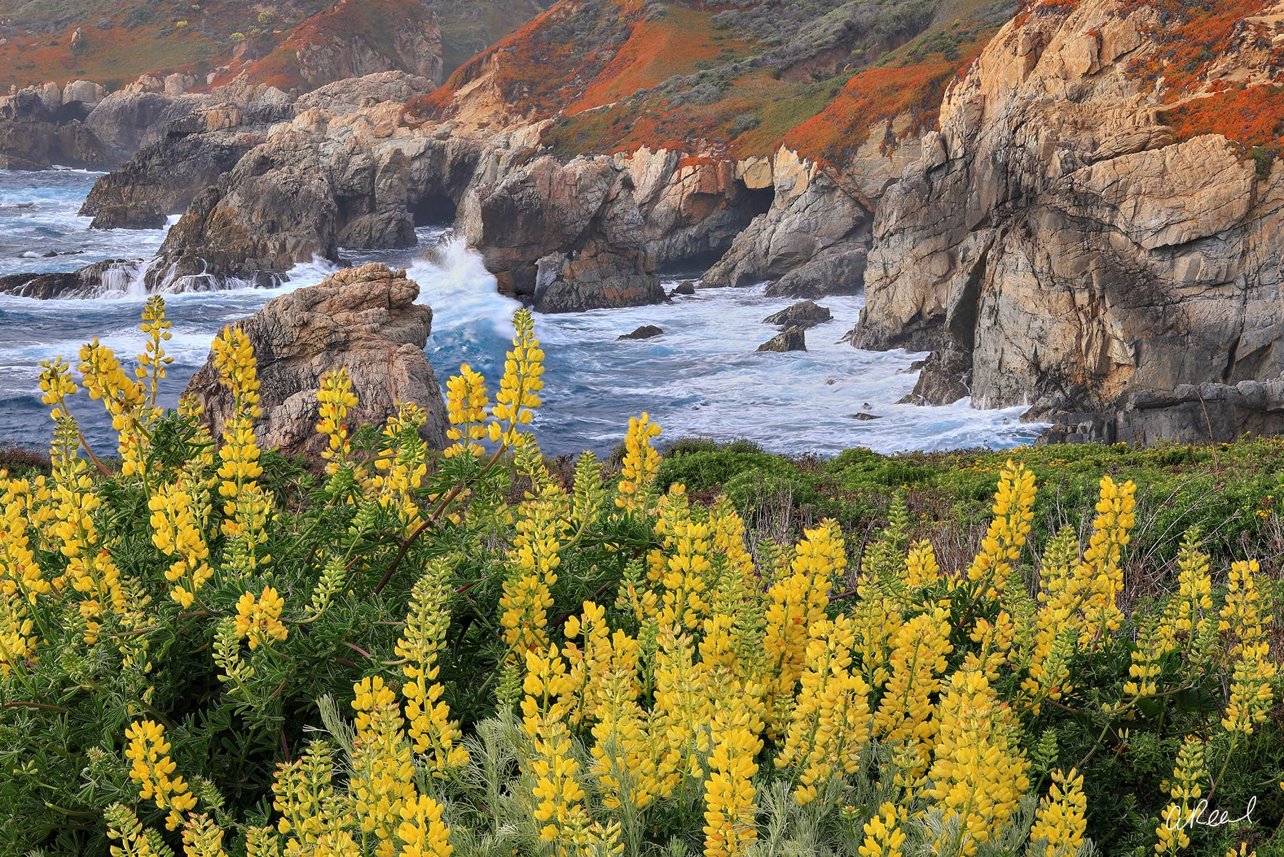 Adorn your walls with Aaron Reed's limited edition photography print, California Dreaming, from his Oceans & Rivers Luxury Art...