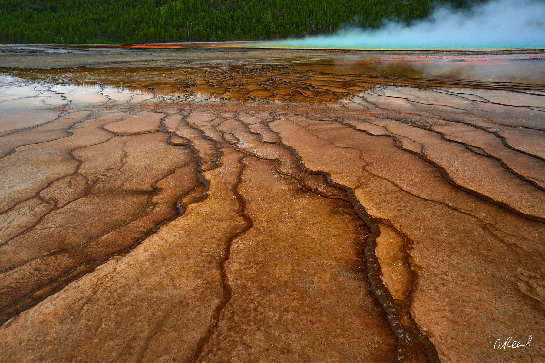 Yellowstone, Grand prismatic, Spring, National Park, Wyoming, photo