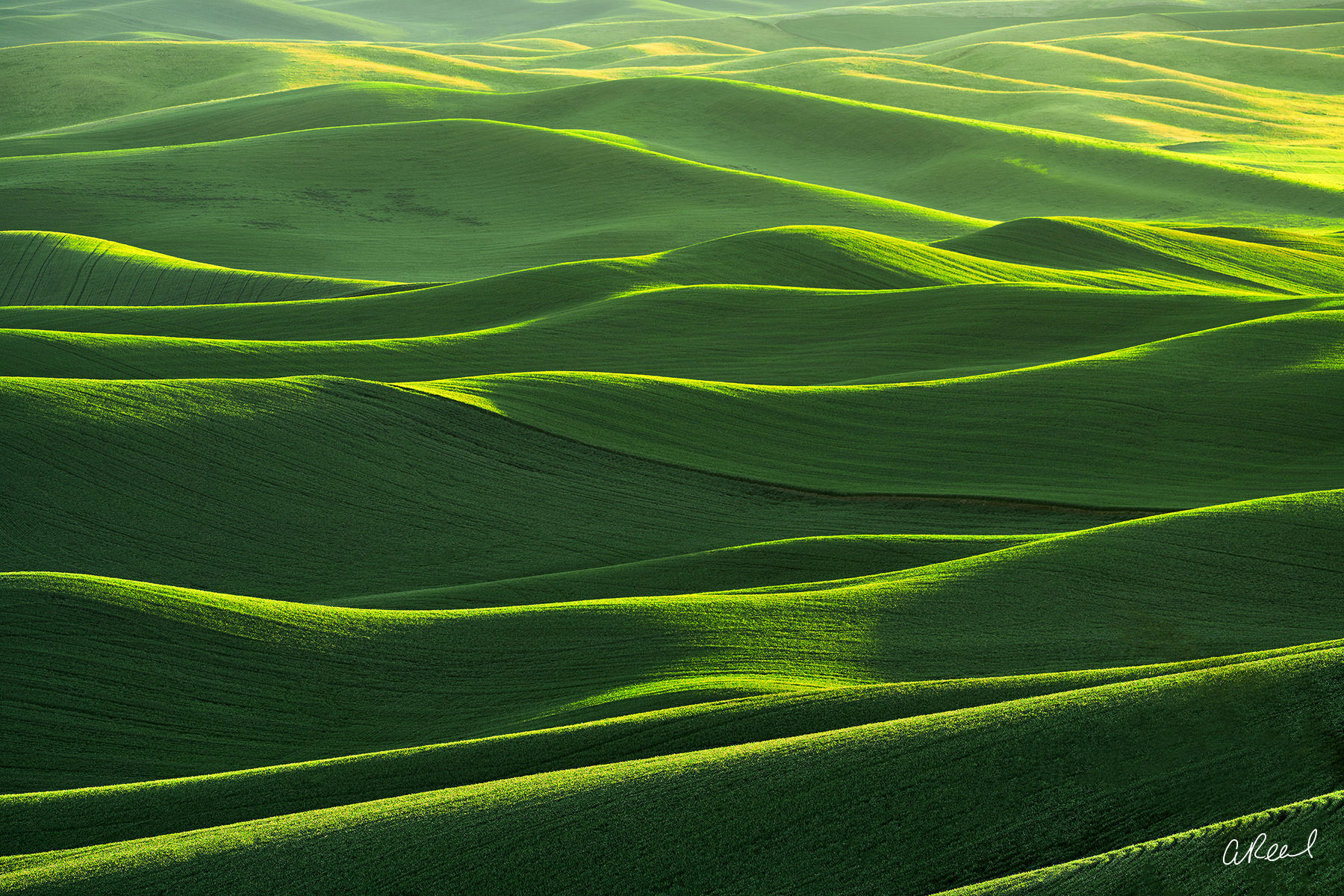 Palouse, Steptoe Butte, Green, Abstract, Light, Lantern, Washington, Fields, Grain, photo