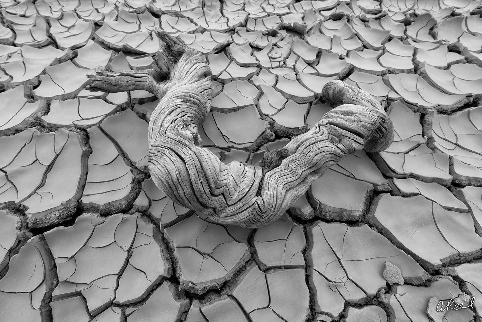 Dry Lake, Fine Art, Cracked, Limited Edition, Mud, Death Valley, National Park, California, , photo