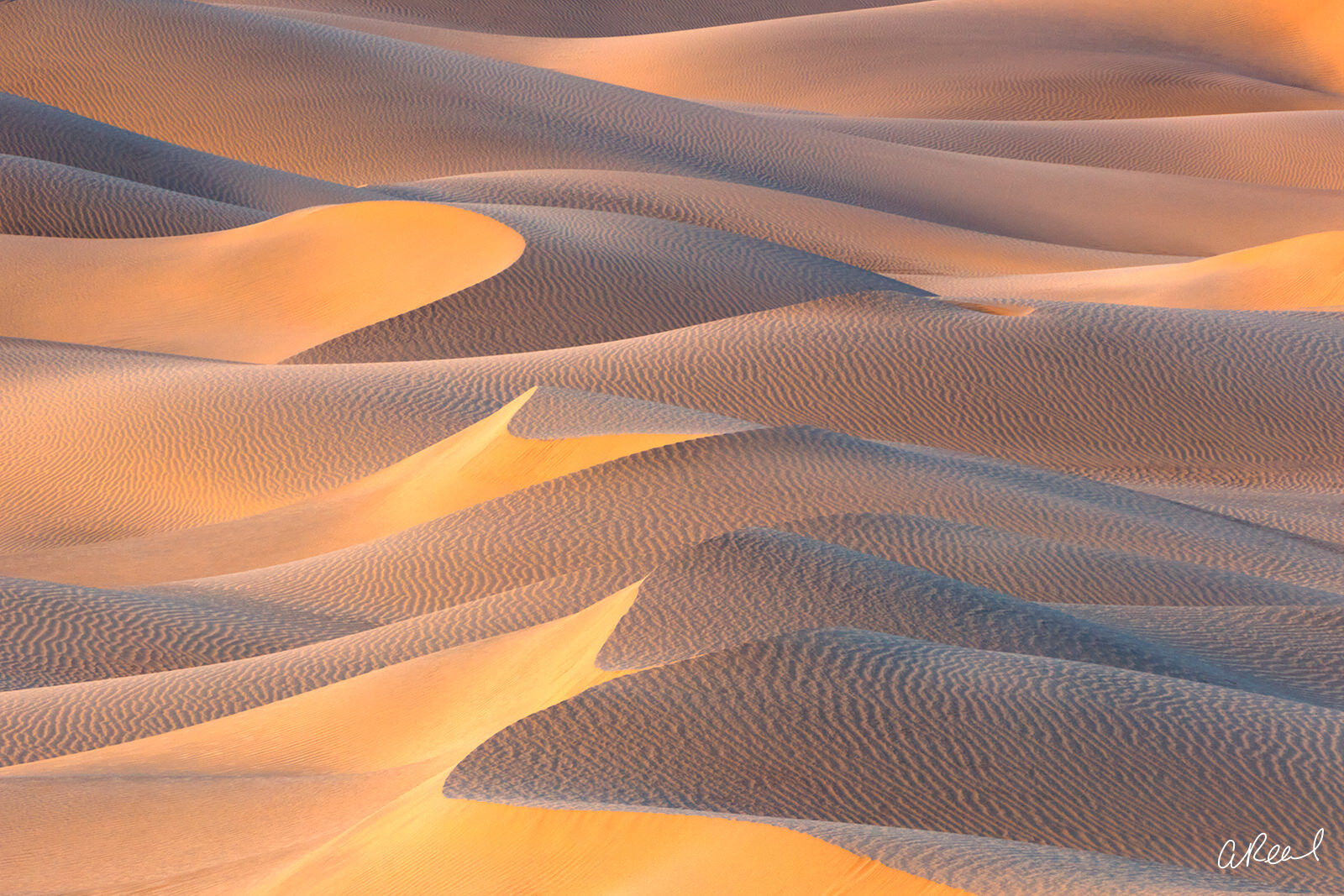 Mesquite, Dunes, Sand, Death Valley, Fine Art, Limited Edition, California, National Park, , photo