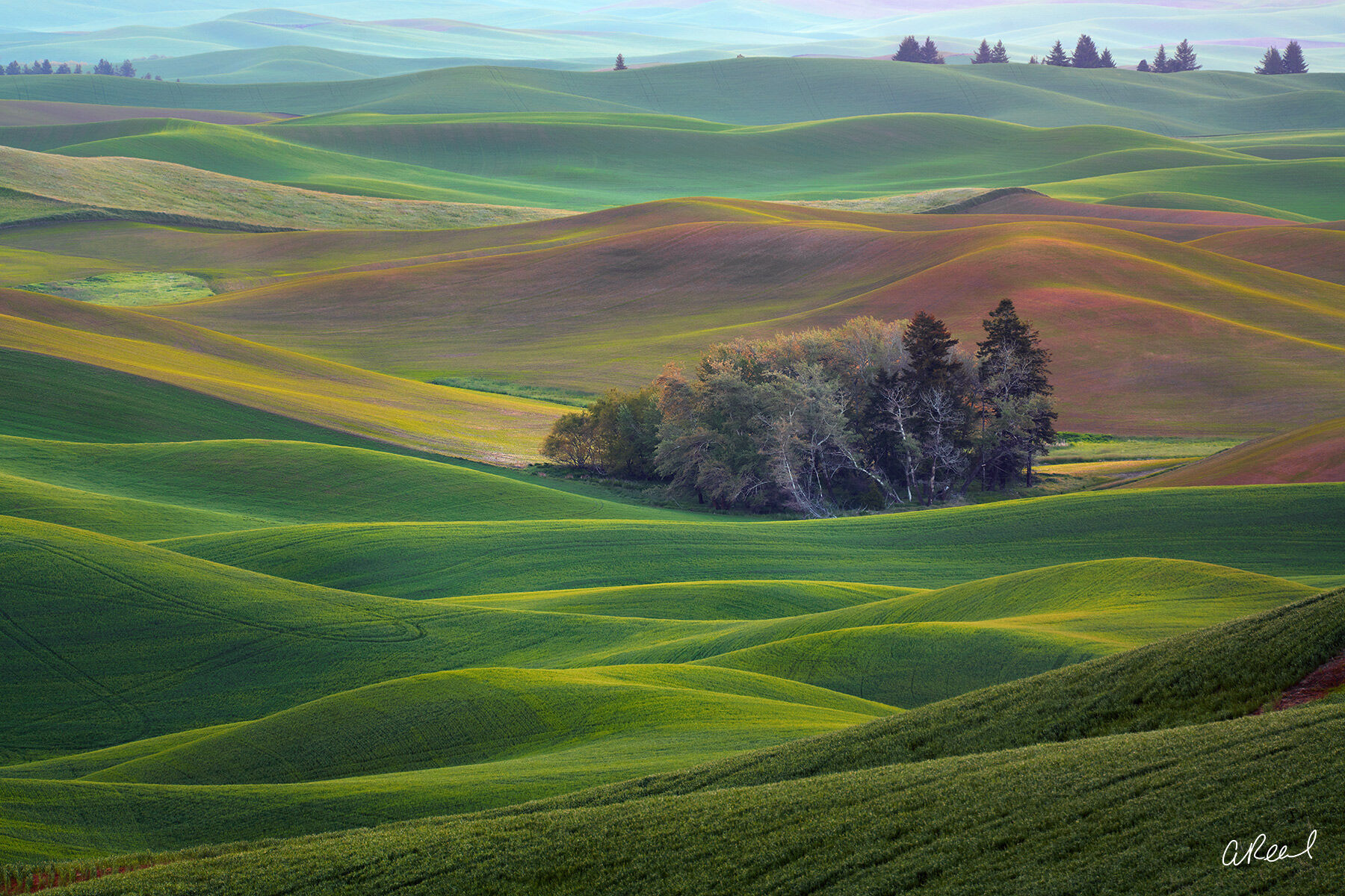 Steptoe, Butte, Palouse, Washington, Fine Art, Photography, Limited Edition, , photo