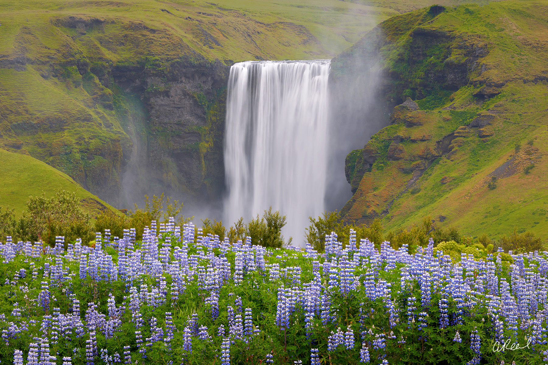 Transform your space with Aaron Reed's limited edition photography print, Magic Carpet, from his Iceland Nature Photography collection...