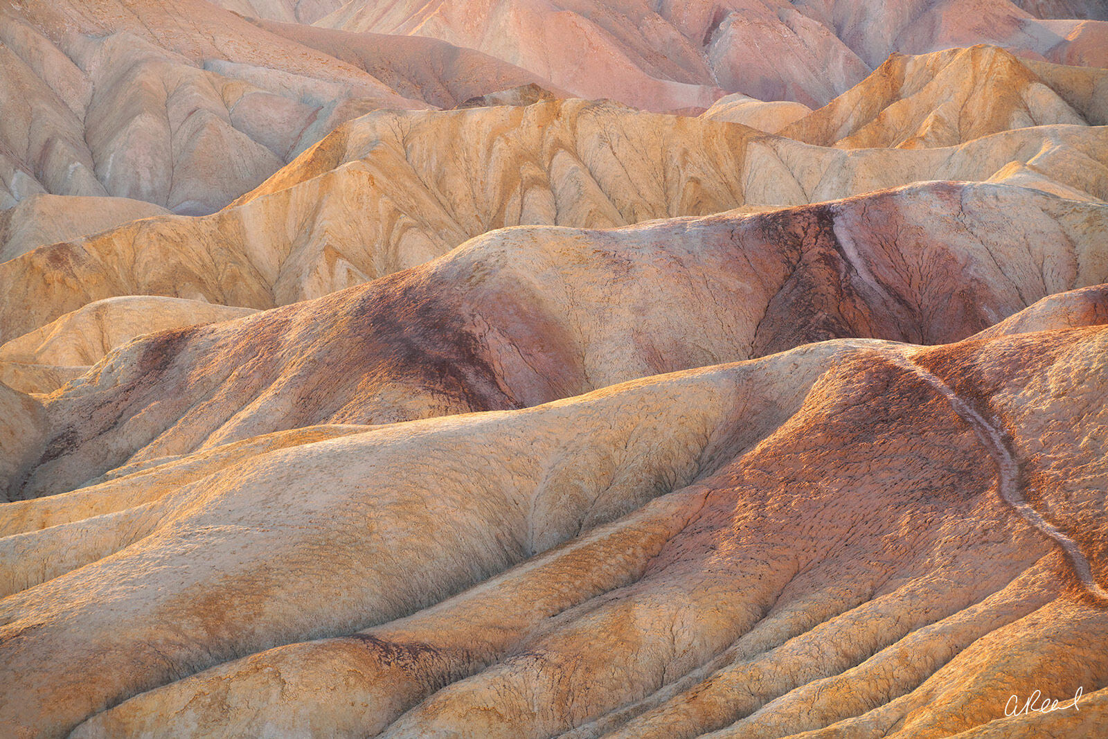 Death Valley, Graben, Geological, Zabriskie Point, Death Valley National Park, photo