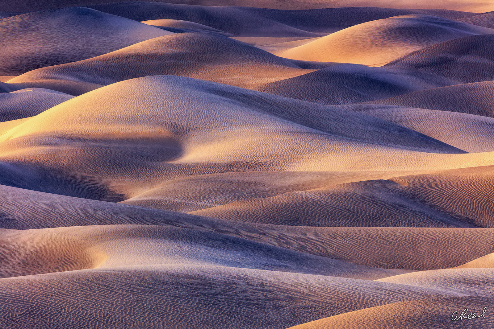 Fine Art, Limited Edition, Mesquite Dunes, Death Valley, National Park, Shadow Stories, Dunes, California, , photo