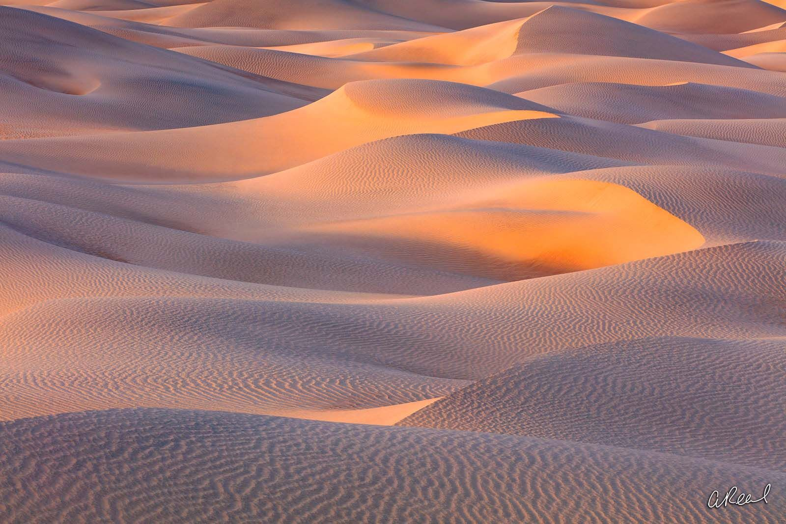 Limited Edition, Fine Art, Sand Dune, Death Valley, California, Mesquite Dunes, National Park, Abstract , photo