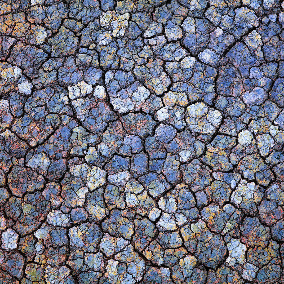 A photograph of colorful details found in geothermal mud in Iceland titled Infinite Worlds.