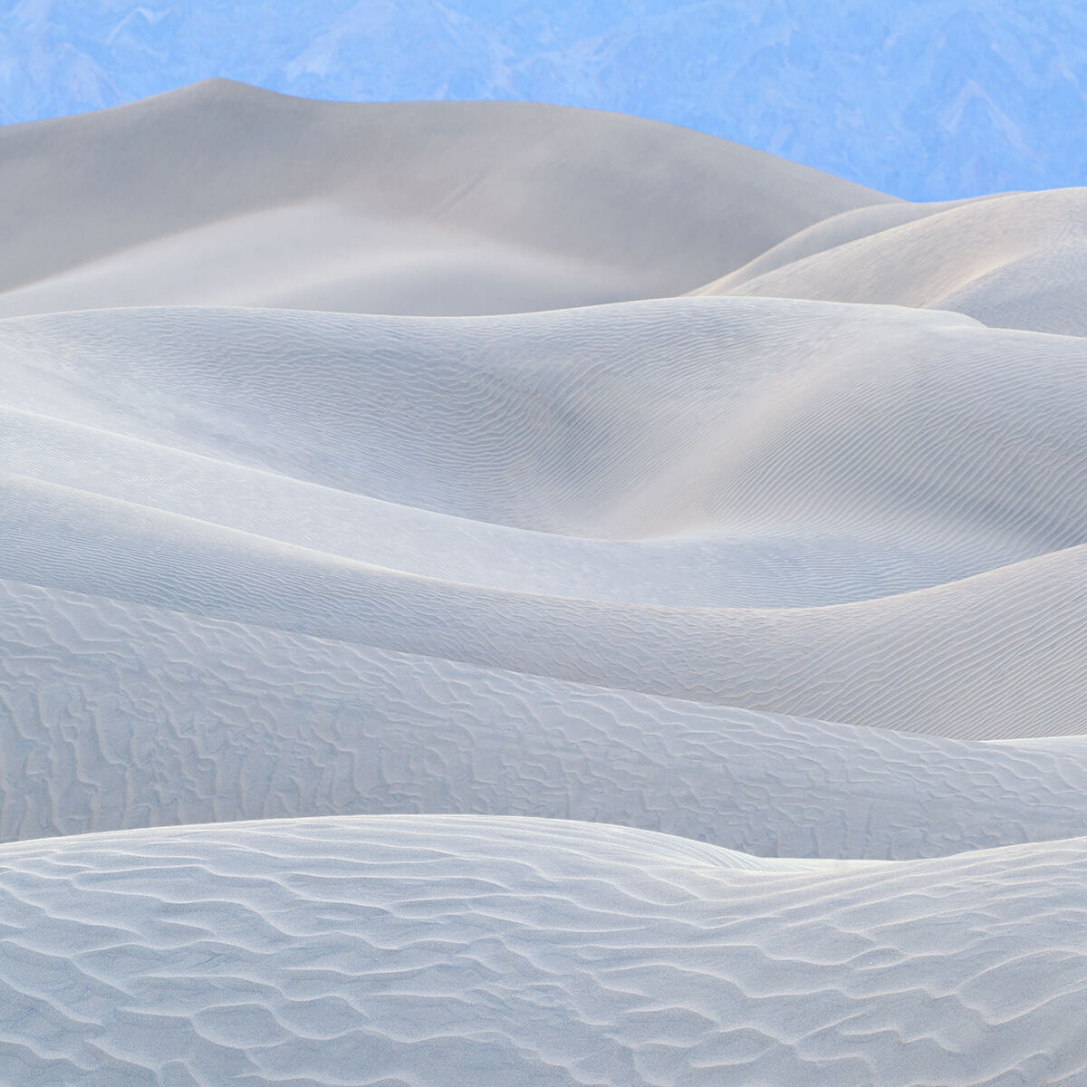 A photograph of the Mesquite Sand Dunes in Death Valley titled White Satin.