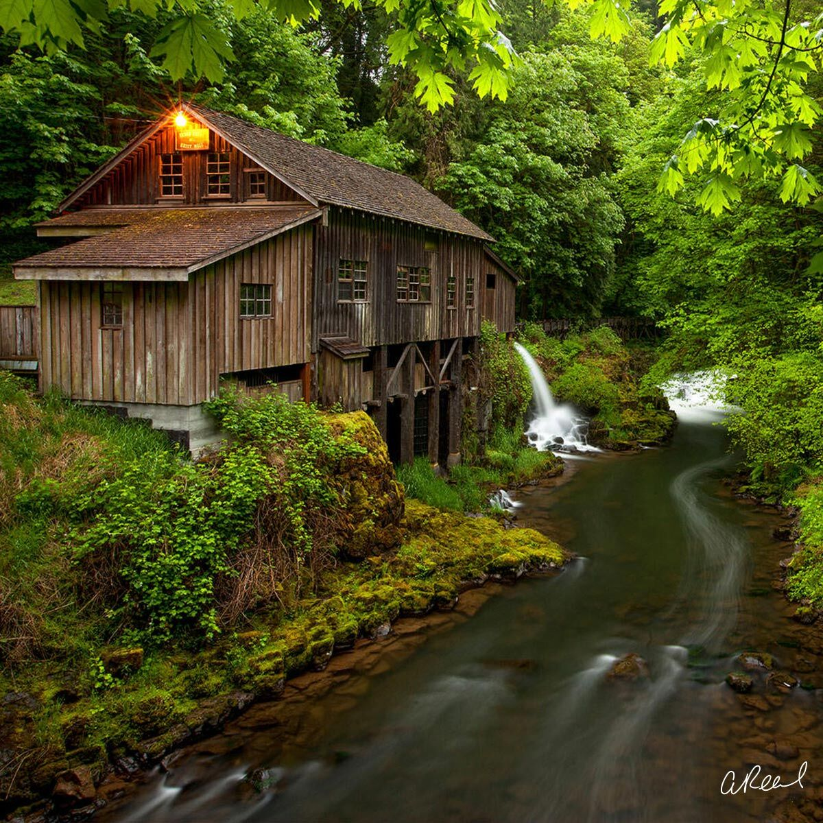 A fine art photograph of the Grist Mill in Woodland Washington during Spring.
