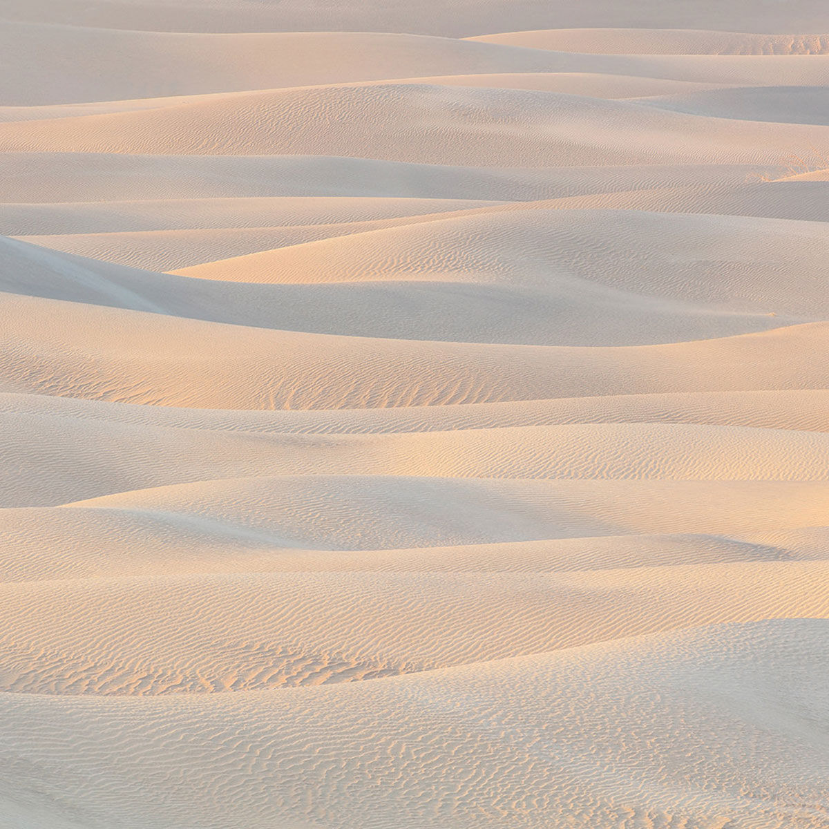 A warm abstract photograph of sand dunes inside Death Valley National Park titled Wind In Waves.