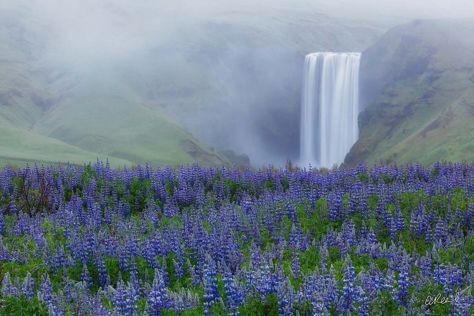 Fine Art Limited Edition of 50 - The Skógafoss is one of the biggest waterfalls in the country with a width of 15 metres...