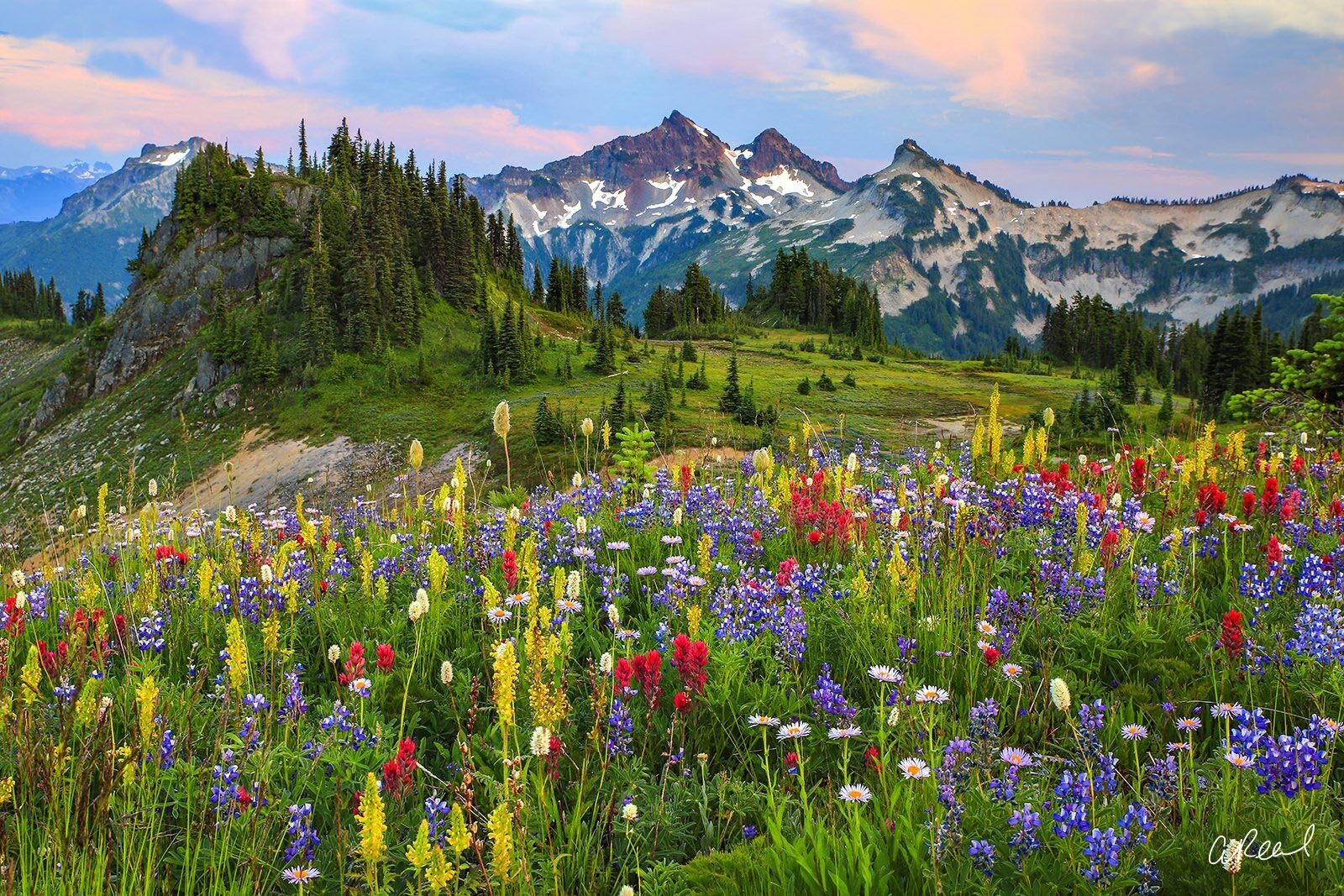 Fine Art, Limited Edition, Tatoosh, Mt rainier, National Park, Mountain, Paradise, Range, Washington, photo