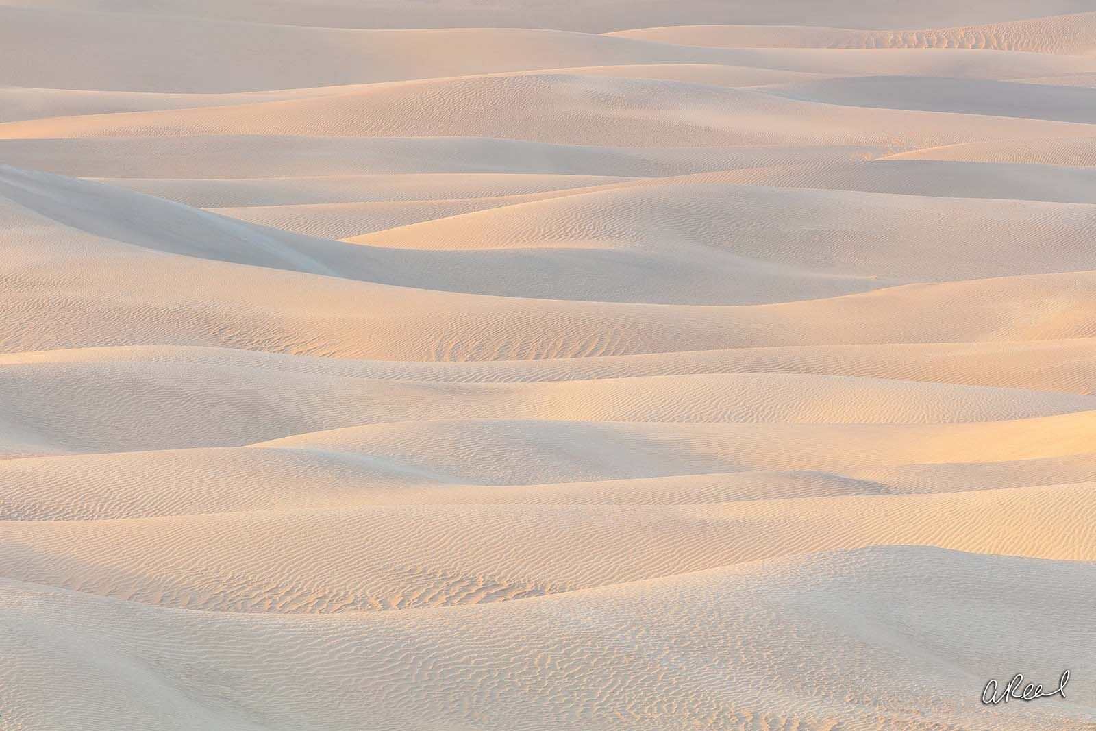 fine art, limited edition, dune, Death Valley, California , photo