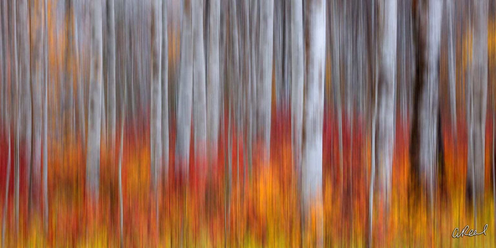 Transform your space with Aaron Reed's luxury fine art photography print, Brushed, from his Panoramic Wall Art collection. Order...