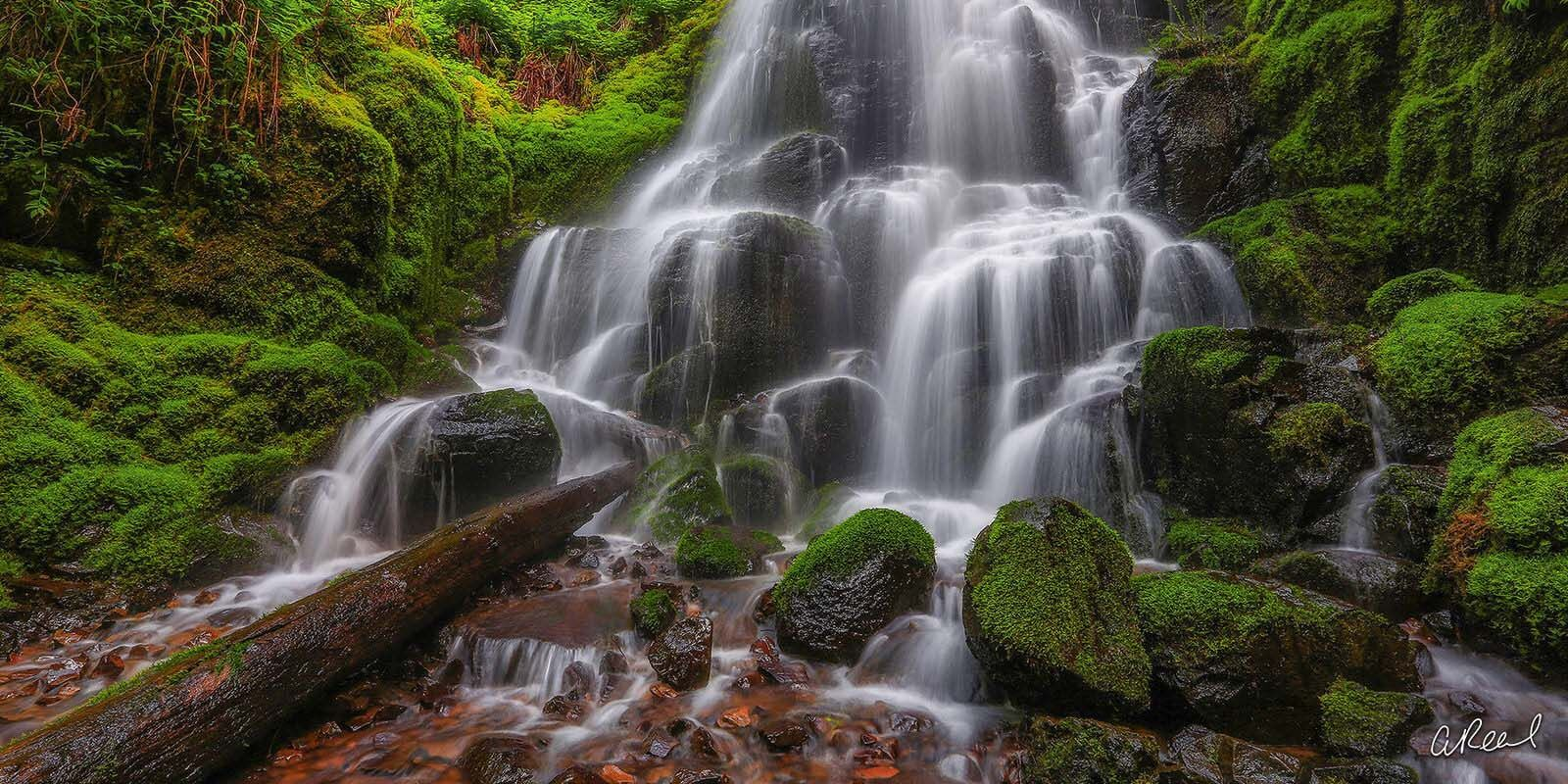 Transform your space with Aaron Reed's luxury fine art photography print, Fairy, from his Panoramic Wall Art collection. Order...