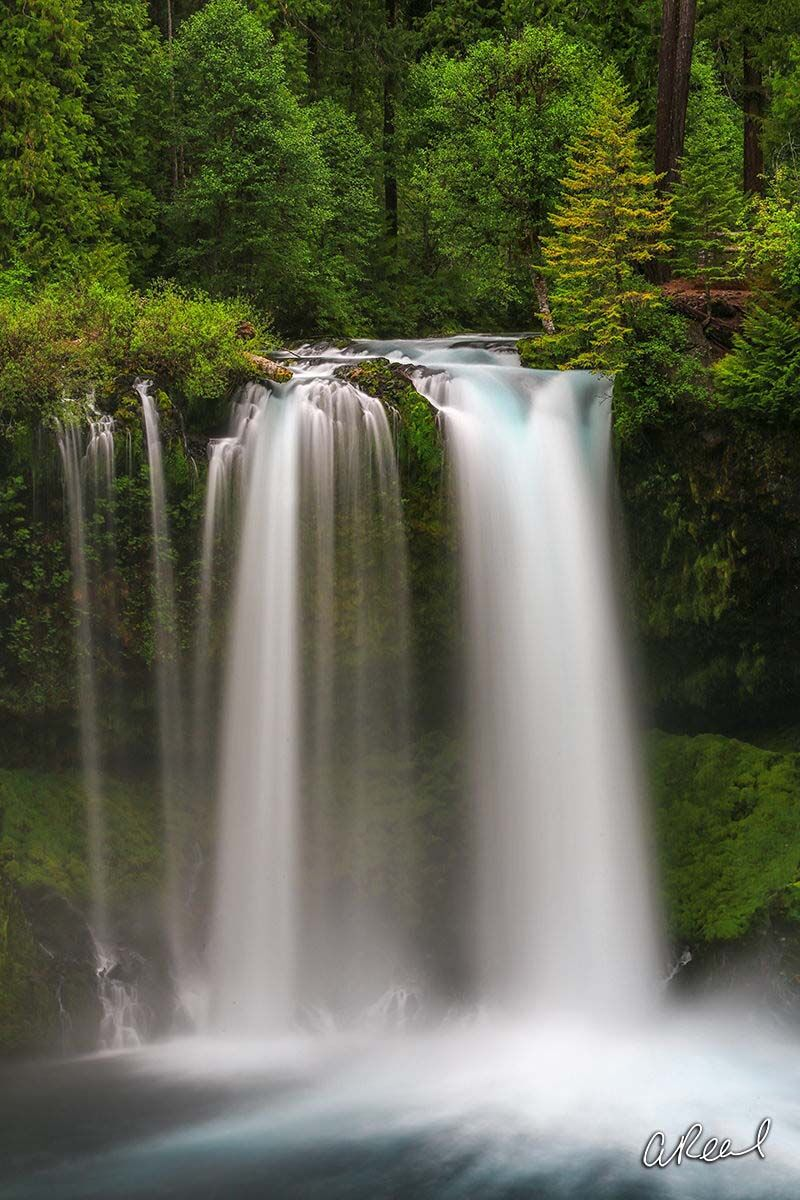 Create a window into nature with Aaron Reed's fine art photography print, Koosah, from his world of waterfalls collection. Order...