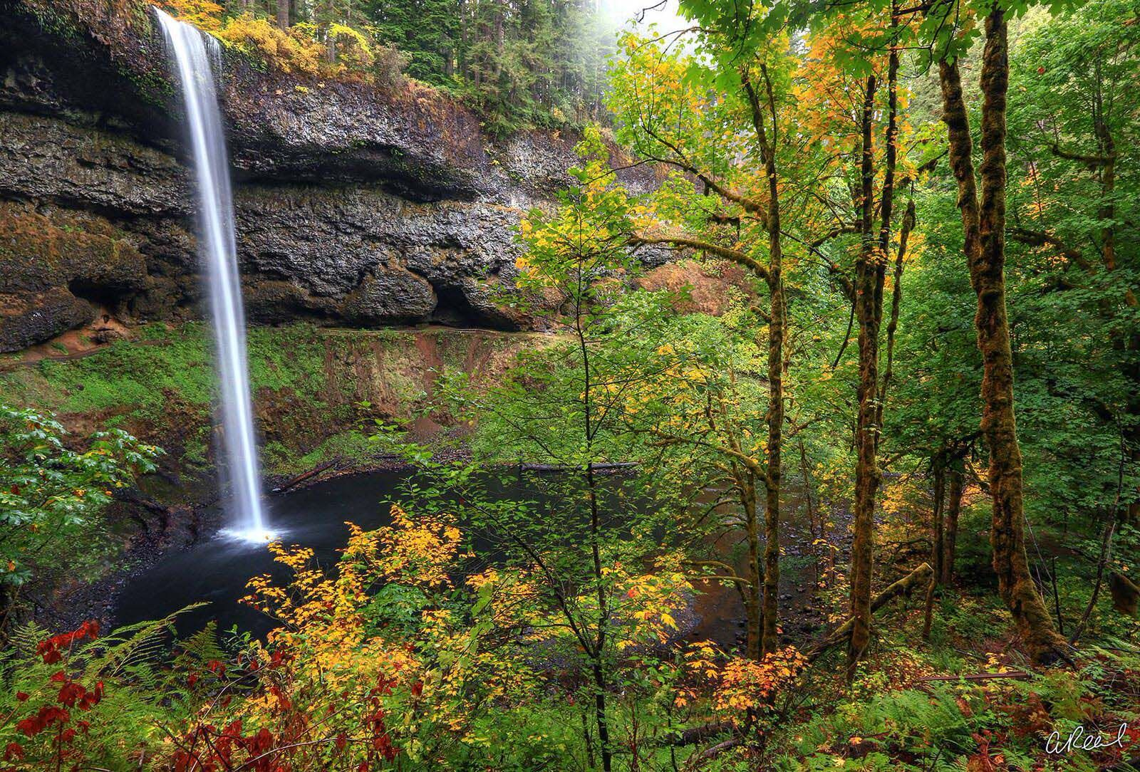 Create a window into nature with Aaron Reed's fine art photography print, Fall Whispers, from his world of waterfalls collection...