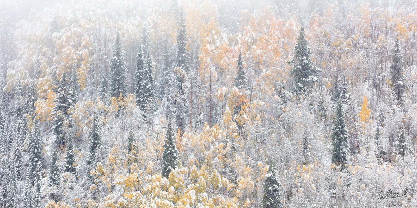Transform your space with Aaron Reed's luxury fine art photography print, Winters Vail, from his Panoramic Wall Art collection...
