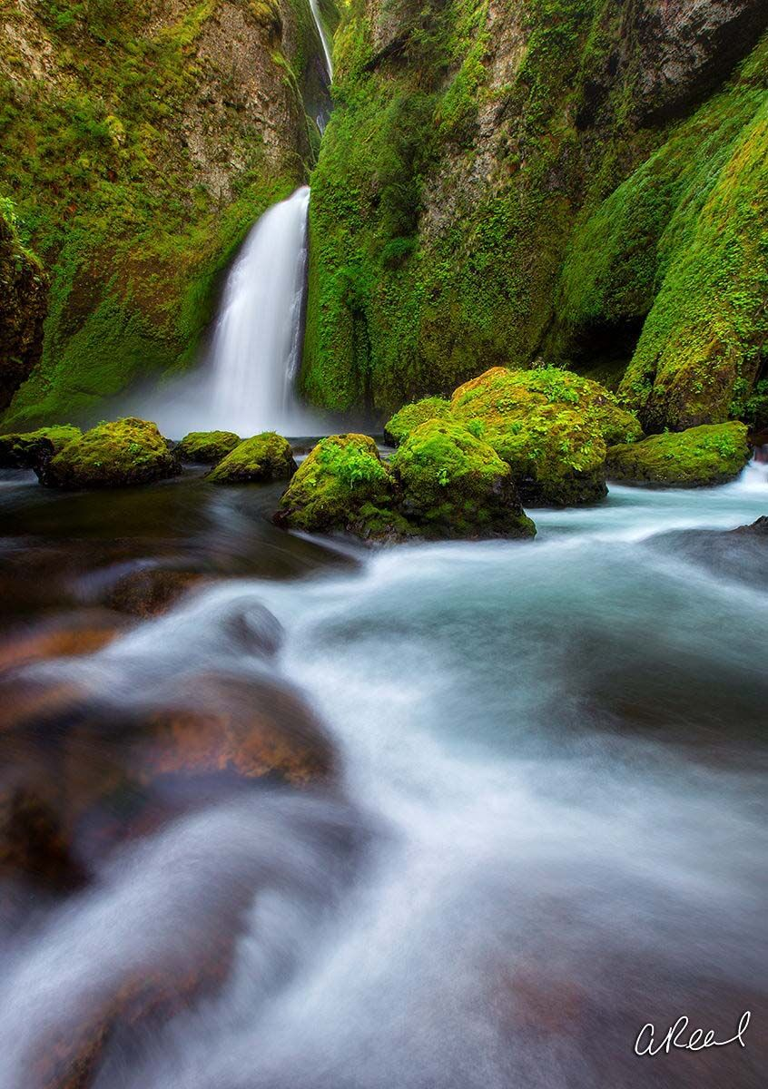 Create a window into nature with Aaron Reed's fine art photography print, Mossy Goodness, from his world of waterfalls collection...